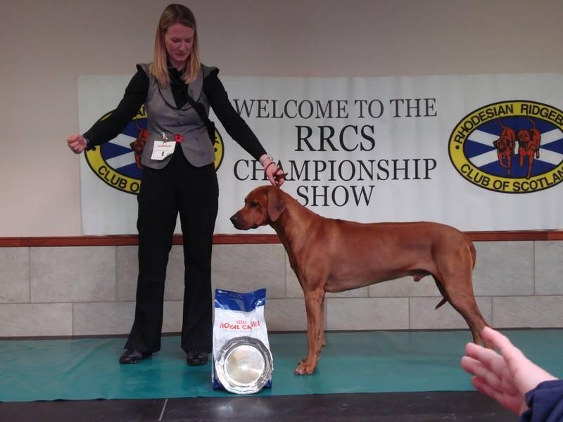 RRCS 1st place Limit Dog - Nov 09
