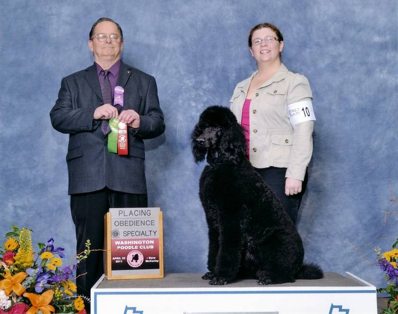Pepper winning second place in Beginner Novice B and earning her first leg.  4/22/11.
