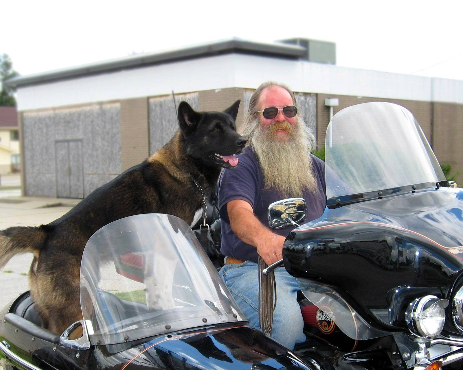 Wolfie Takes a Ride