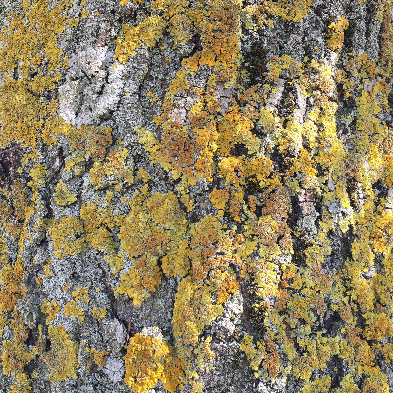 Dagenham abstract photograph
