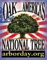 America's National Tree is The Oak