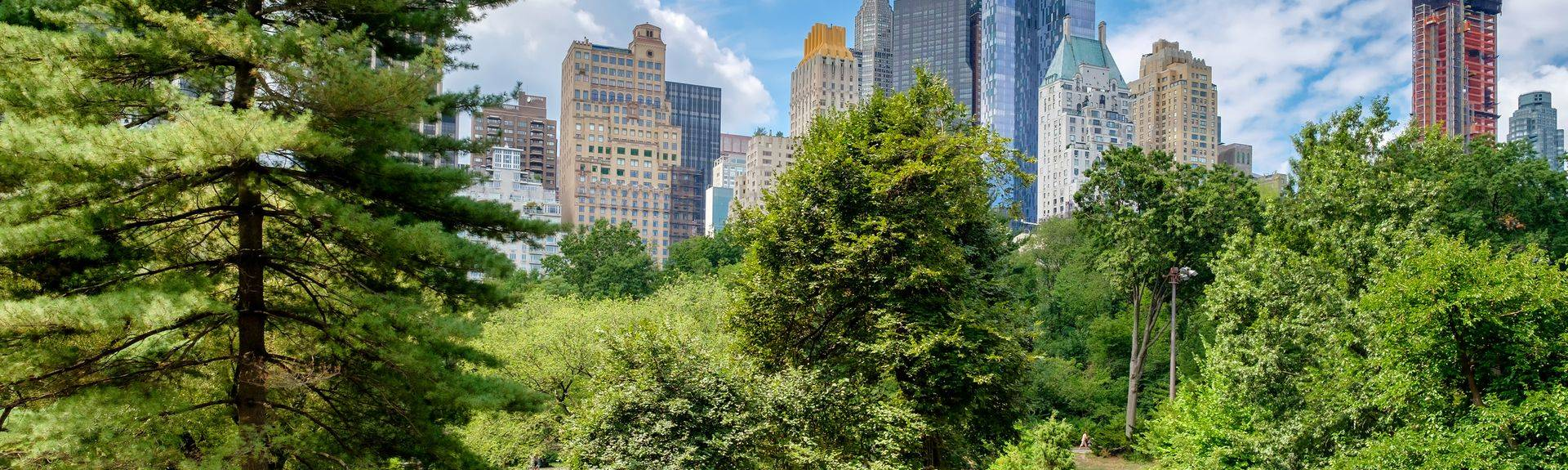NYC DENTAL WELLNESS CENTER, 200 Central Park South, Suite 109, NEW YORK, NY, 10019, United States