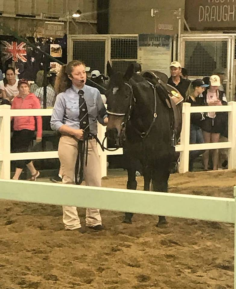 Jo at Ekka with a QLD mare, Brooke Lodge Wanderer, owned by Natalie Hall- breed villiage presenting.