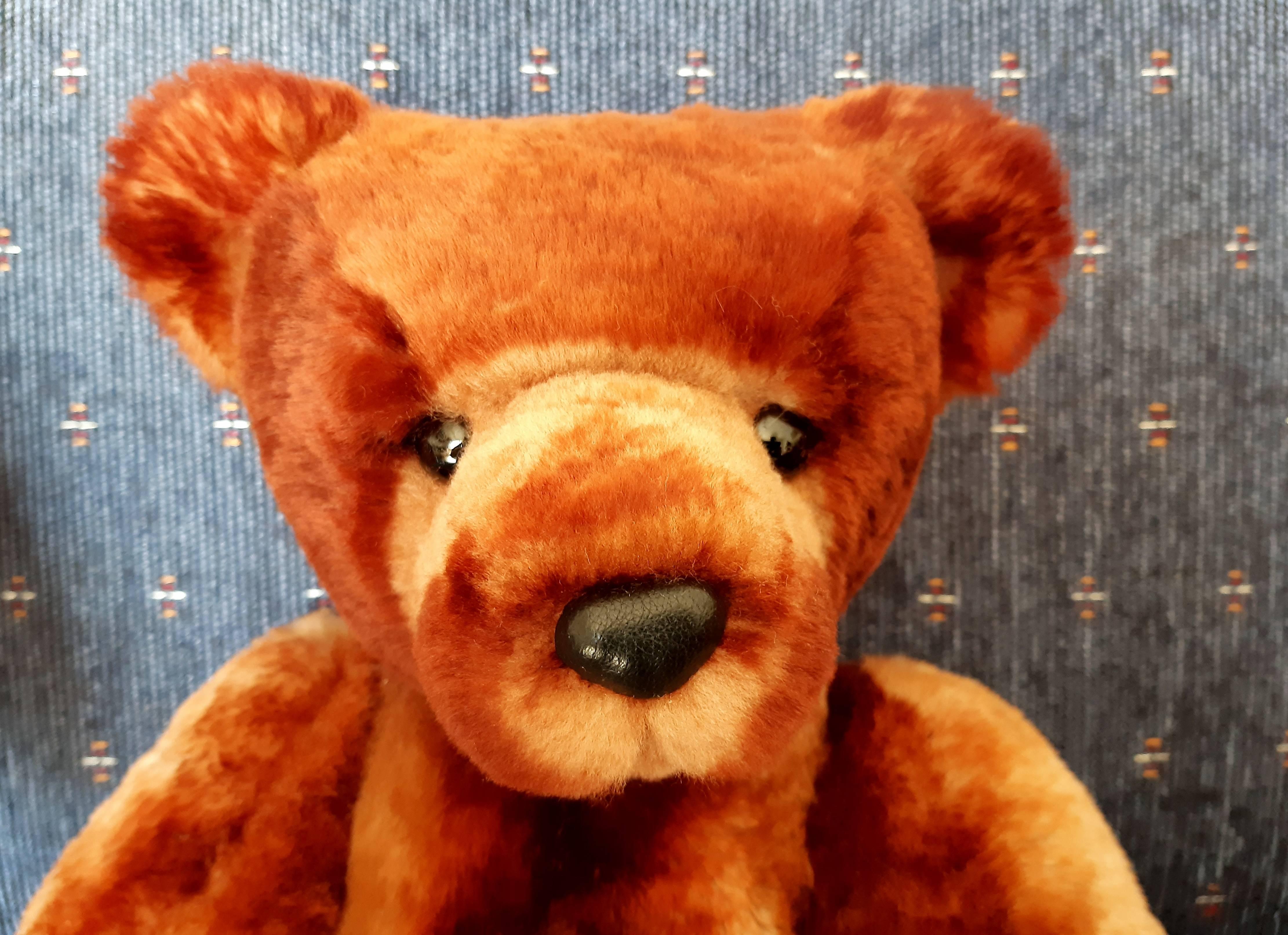 Little Bro bear