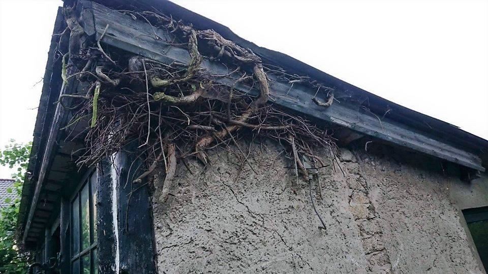 Reparatie van een oude schuur