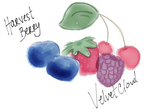 Harvest Berry Velvet Cloud E Liquid