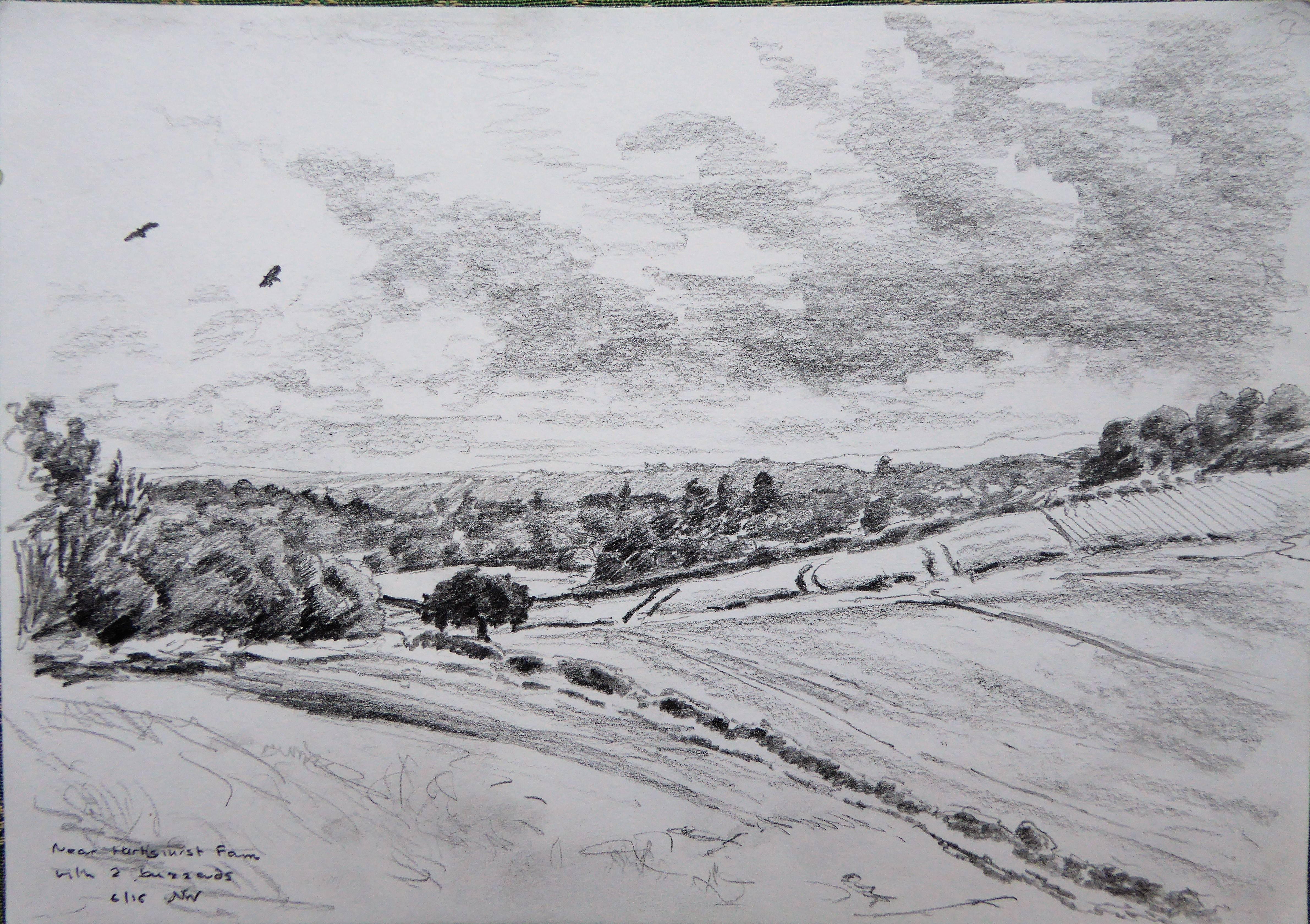 Above Hartshust Farm, Surrey
