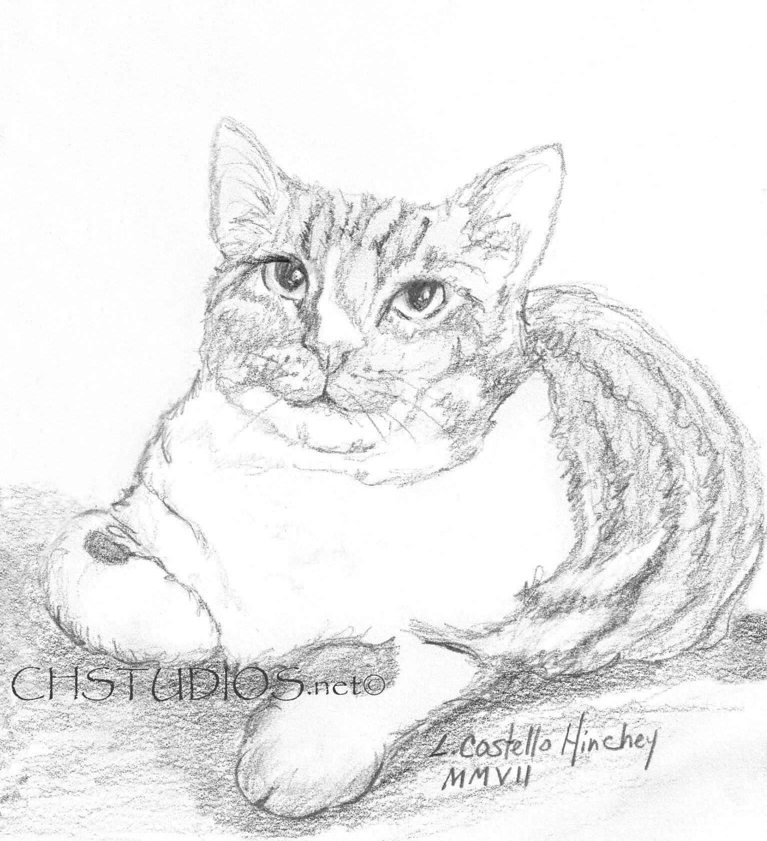 Sketchy Pet Portrait Commission