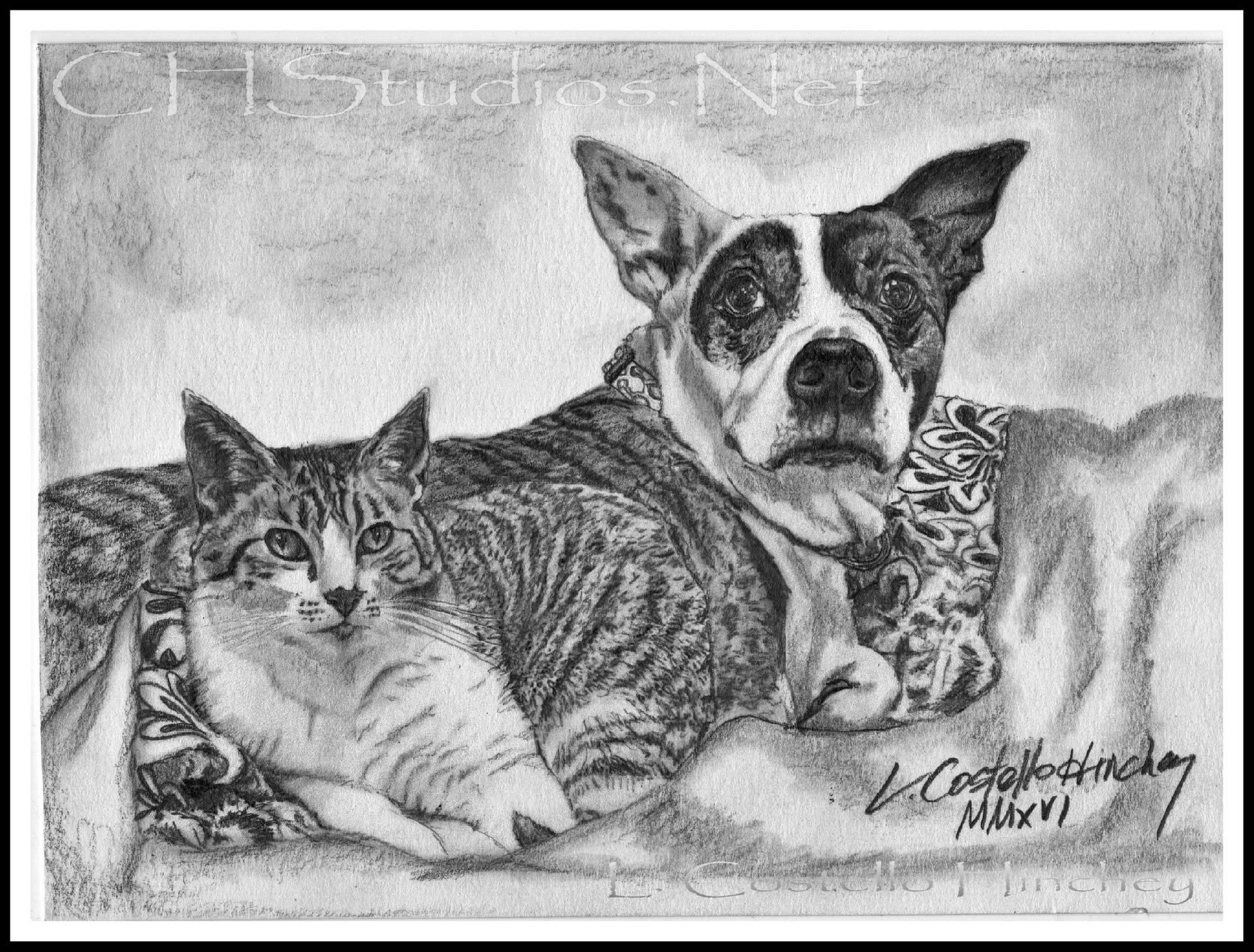 Kitty & Zoey Pet Portrait Commission