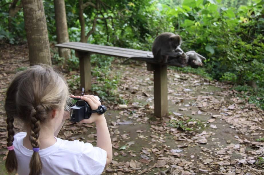 "Maya filming ""grooming monkeys"" (Ubud Monkey Forest, Bali, May 2017)"