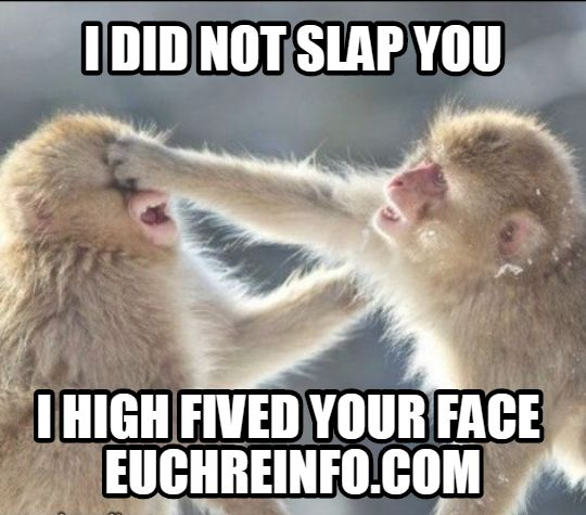 I did not slap you I high fived your face.