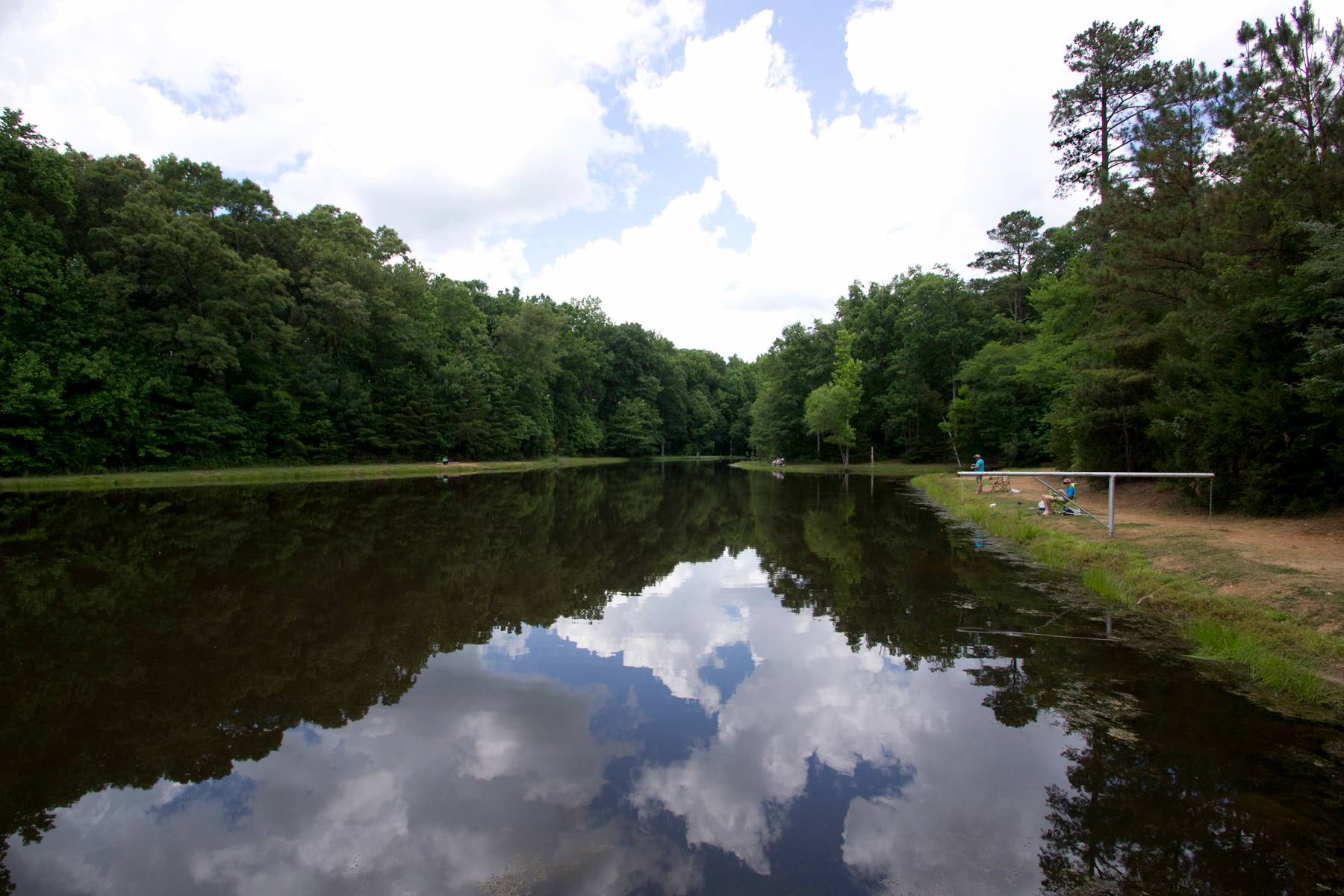Fishing pond at Draper Mgmt. Area in McConnells, SC in York County.