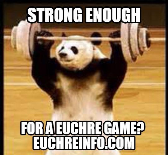 Strong enough for a Euchre game?