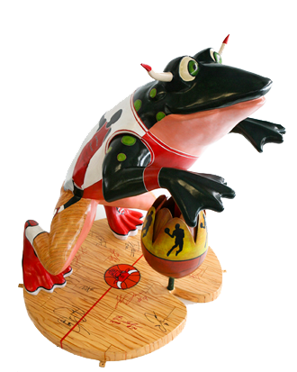 completed bulls frog