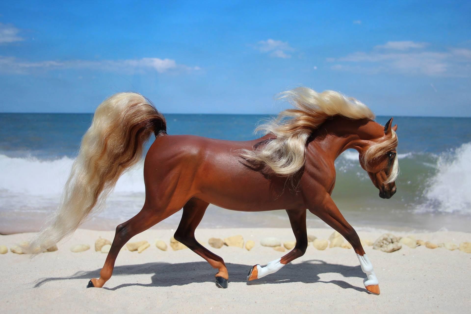 Chestnut Arabian