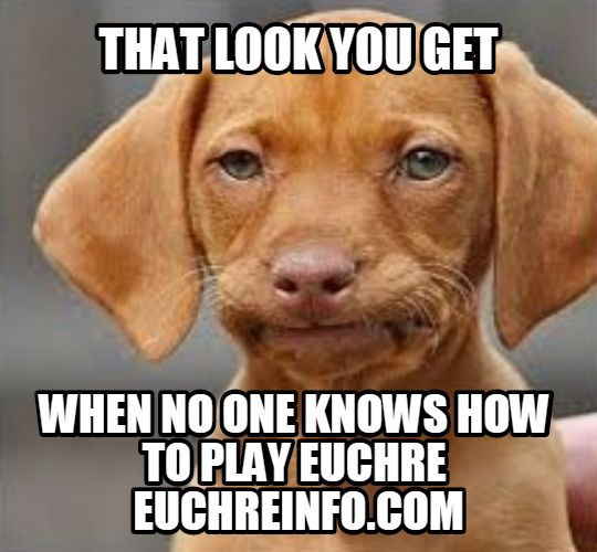 That look you get when no one knows how to play Euchre.