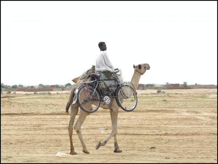 transport voor de fiets