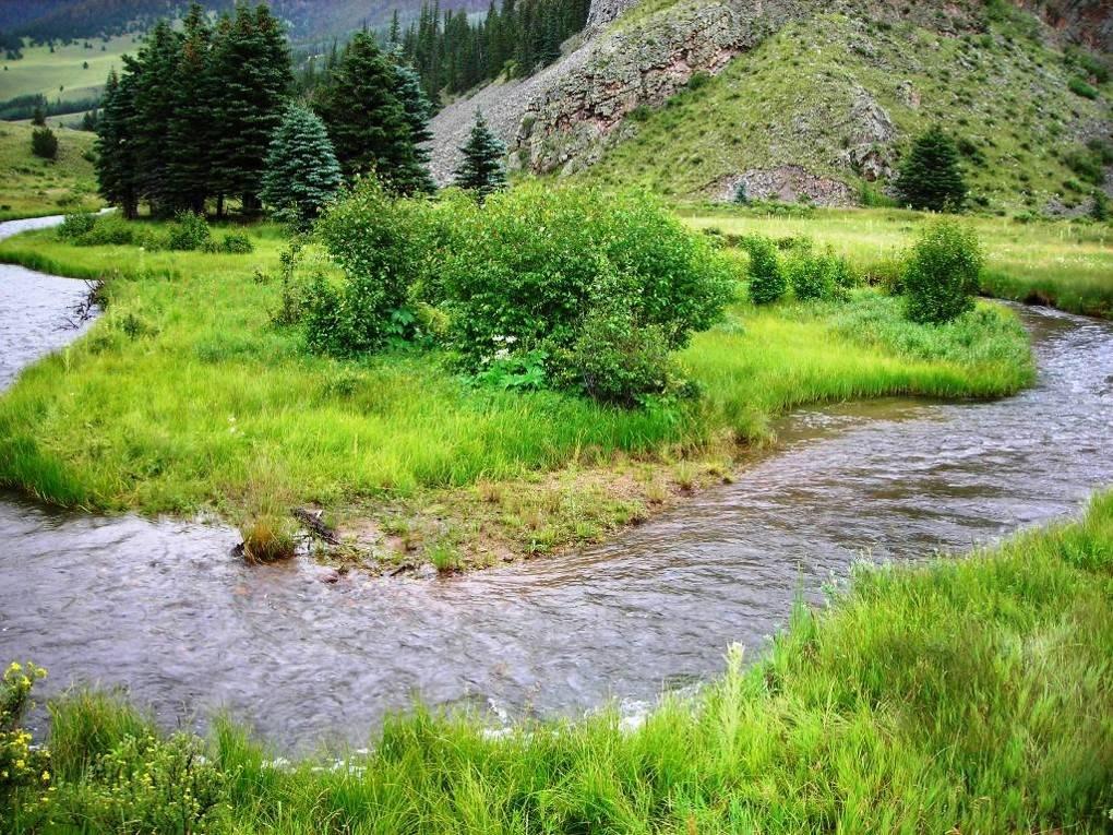 Comanche Creek nr Rio Costilla confluence