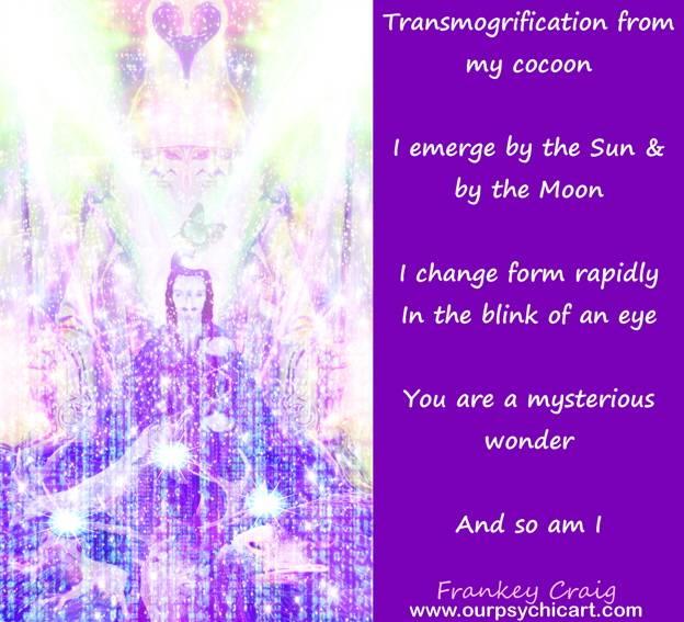 Shapeshifter Transmogrification
