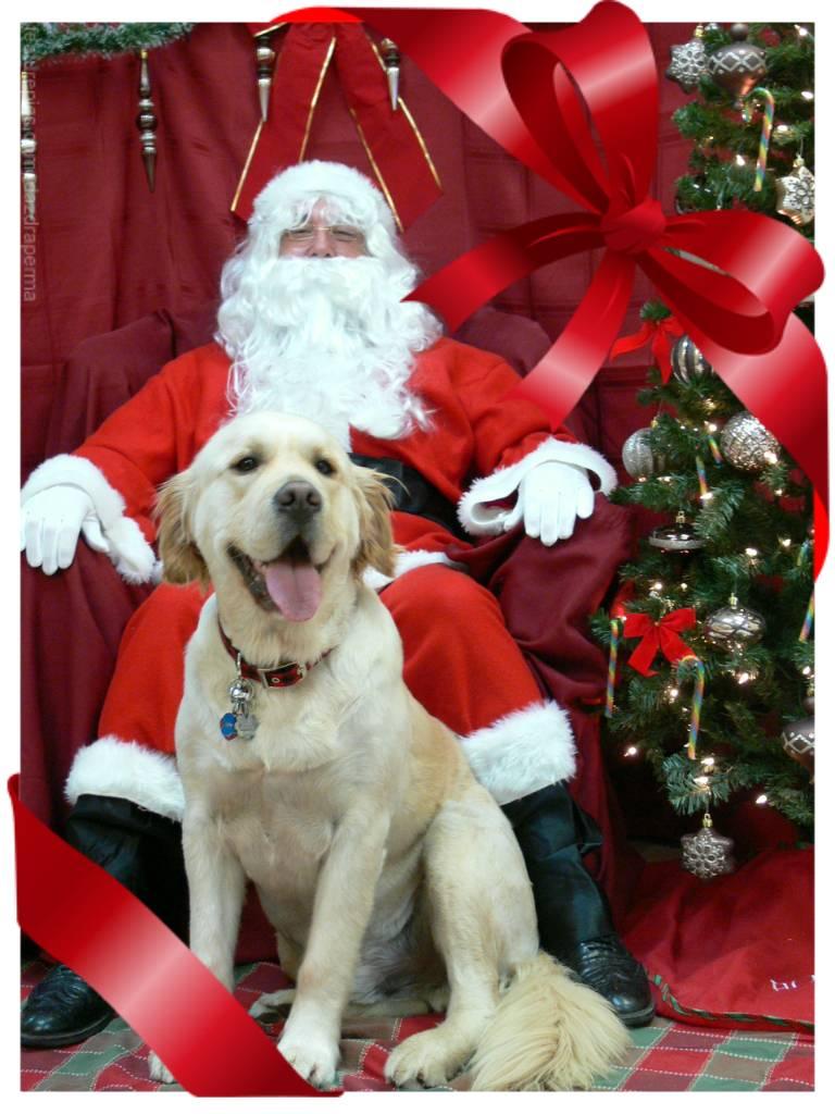 Buddy and Santa