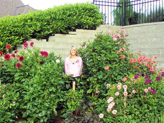 Daughter Nat in her dahlia garden