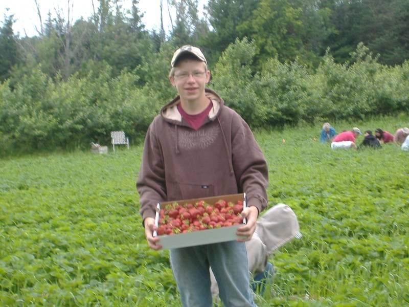 Travis Oja shows off some strawberries