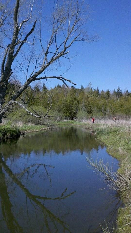 """""""Our"""" River - the Unadilla"""