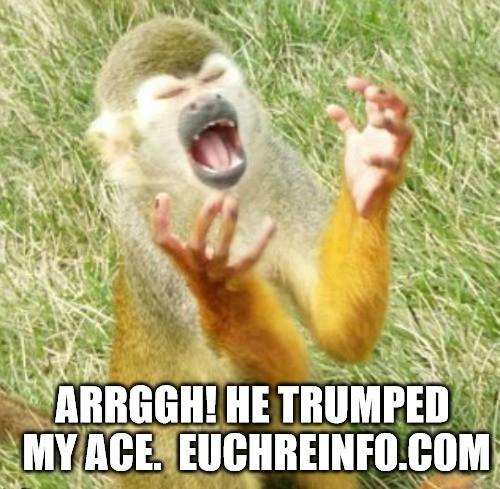 Arrggh! He trumped my ace.