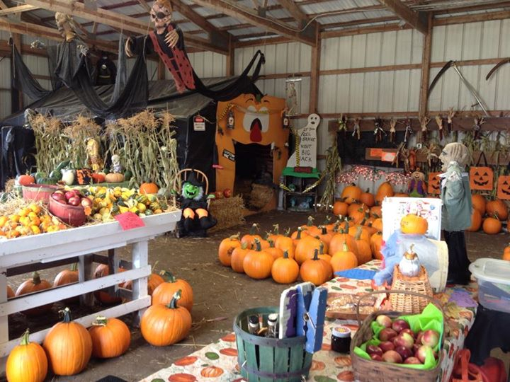 Lots of goodies in the barn