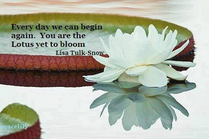 Lotus saying