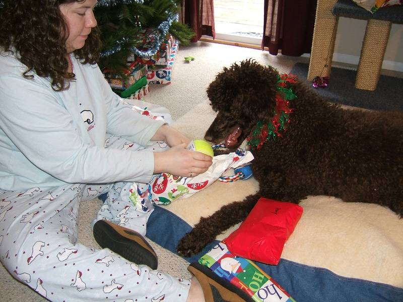 Penny's first holiday season! Opening her gifts. 12/25/06.