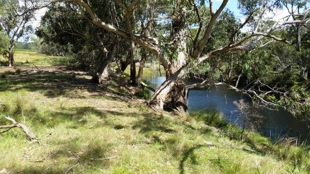 TRIPTYCH: MONGARLOWE RIVER, CURRAJUGG