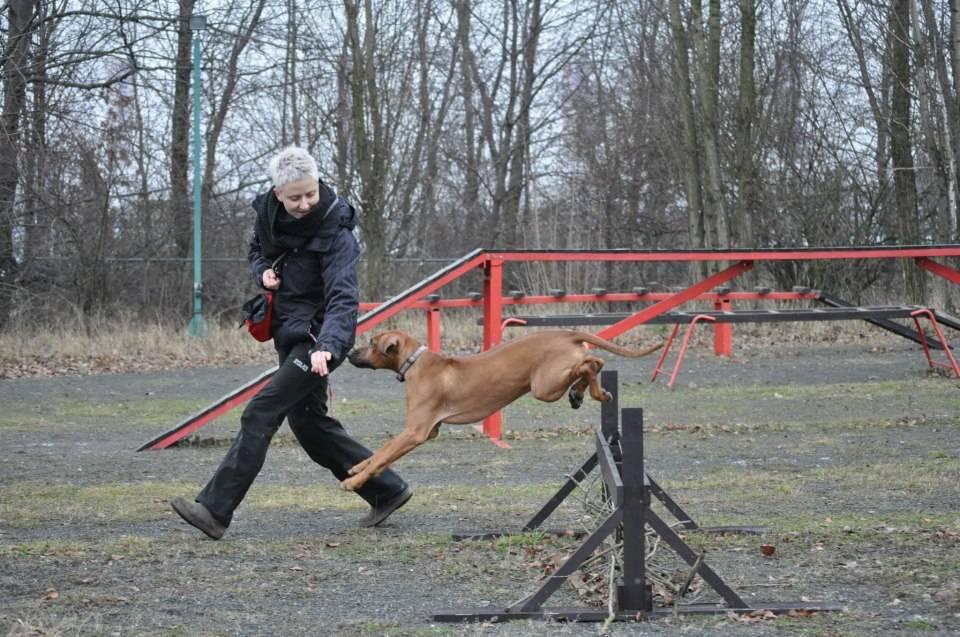 Mari practising for search & rescue!