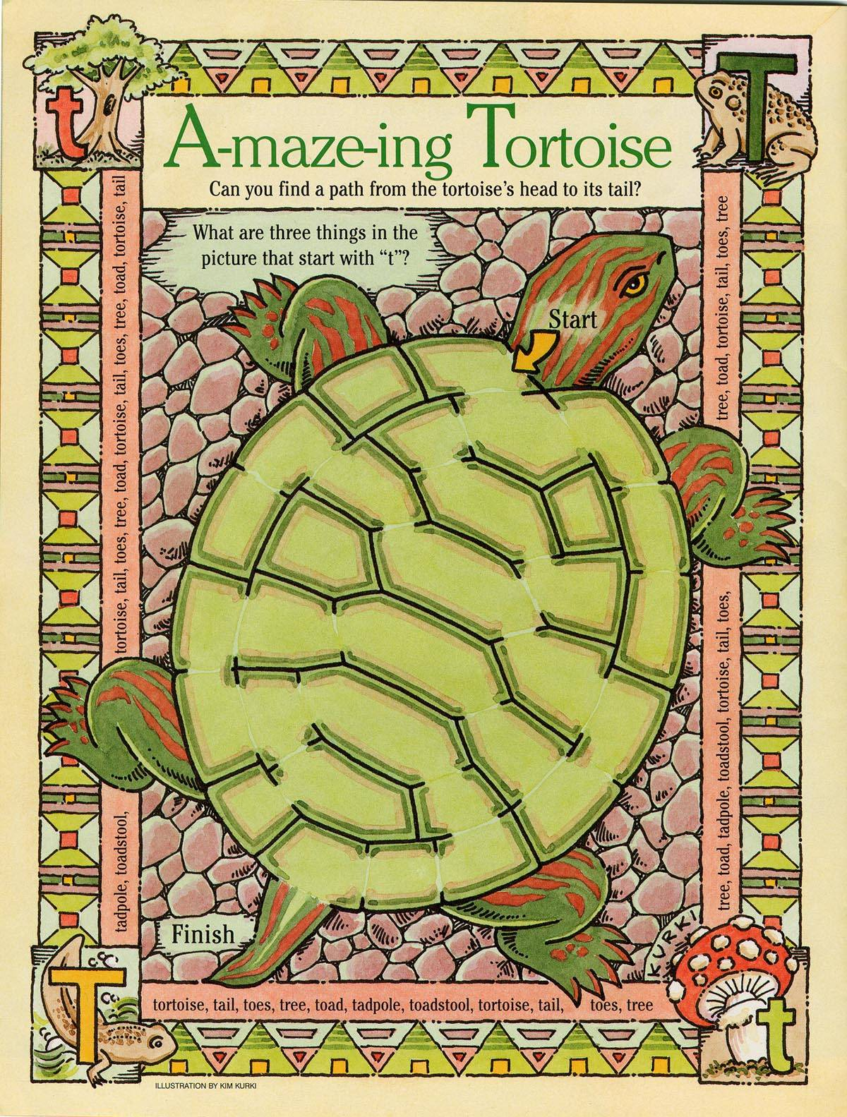 Tortoise Maze