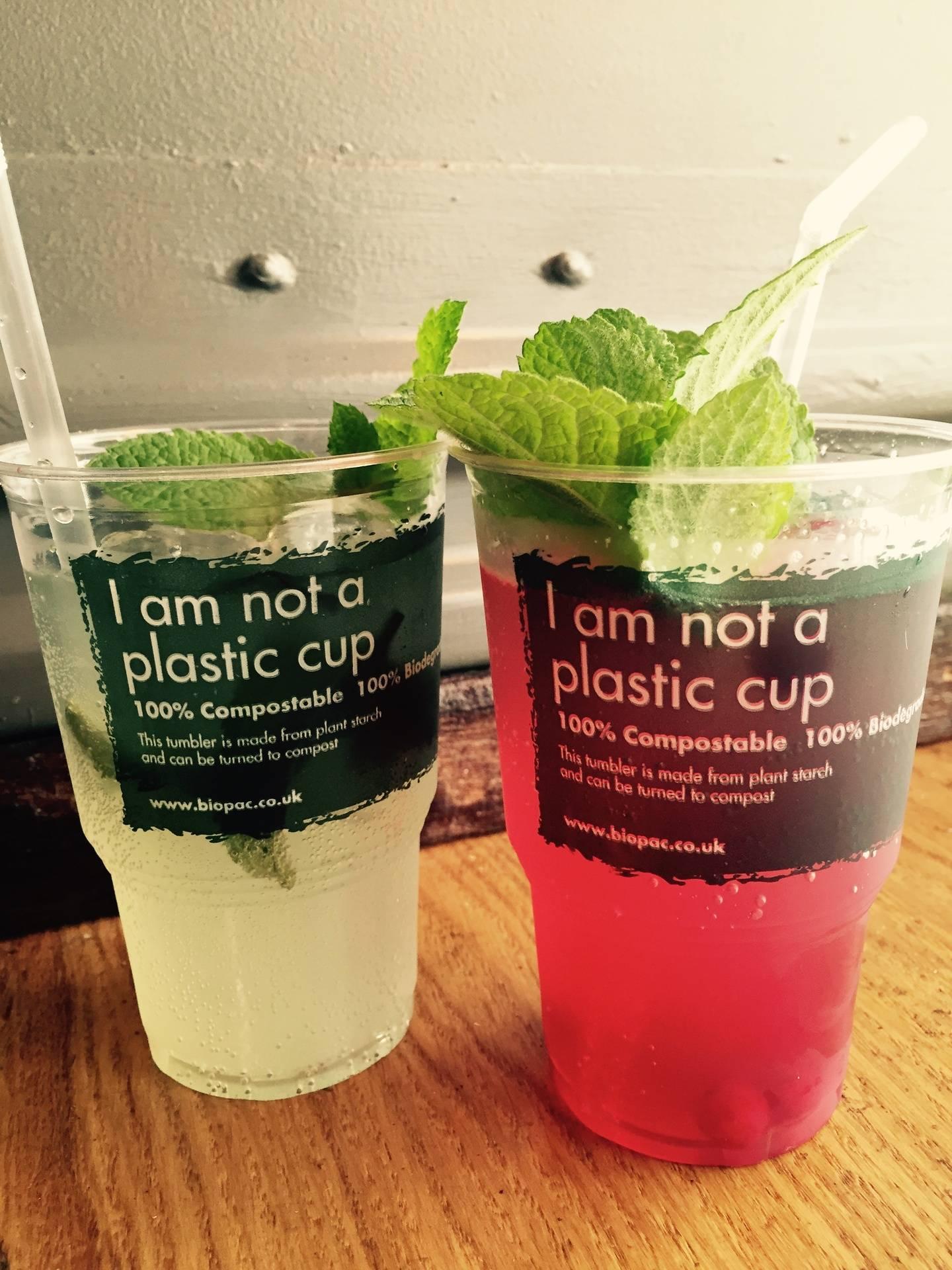 Biogradable Cups