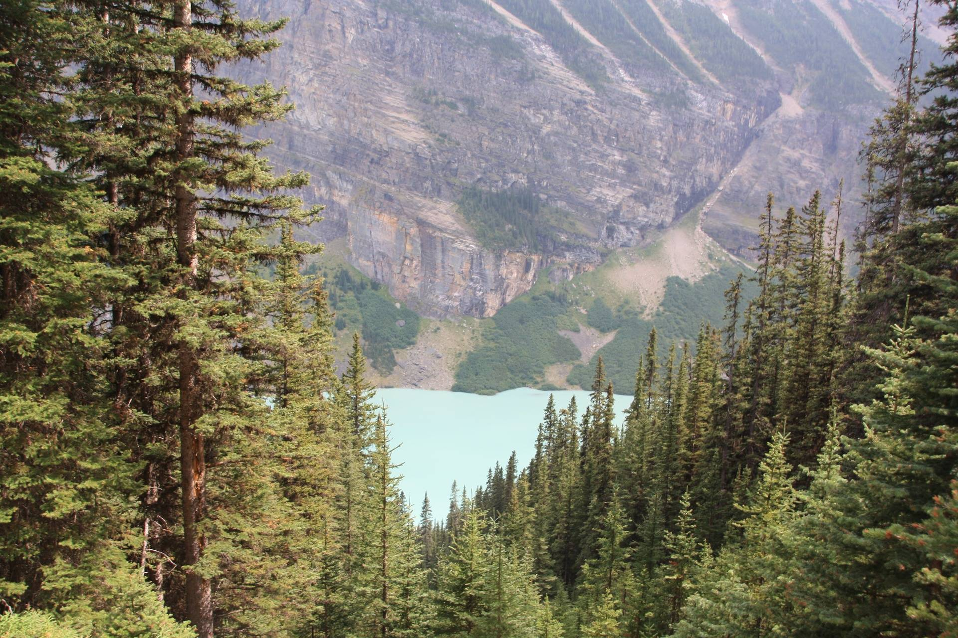 Lake Louise from trail to Lake Agnes teahouse