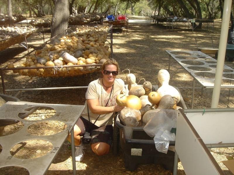 2009 Kumu Manu in San Diego - Gourd Farm