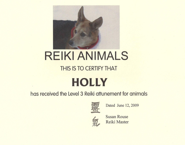 Holly the Reiki Dog