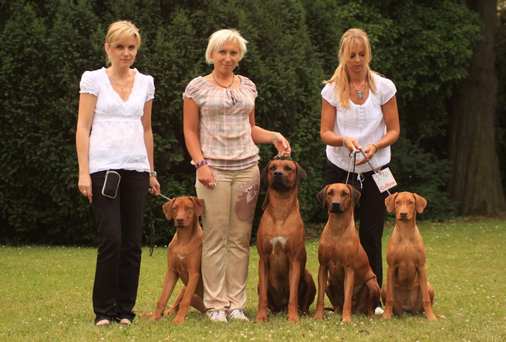 LUANDA show team ROCK the rings at International dog Show BRNO 24.06.2011!