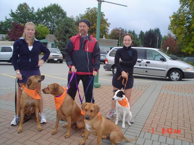 Dog 5 km Run