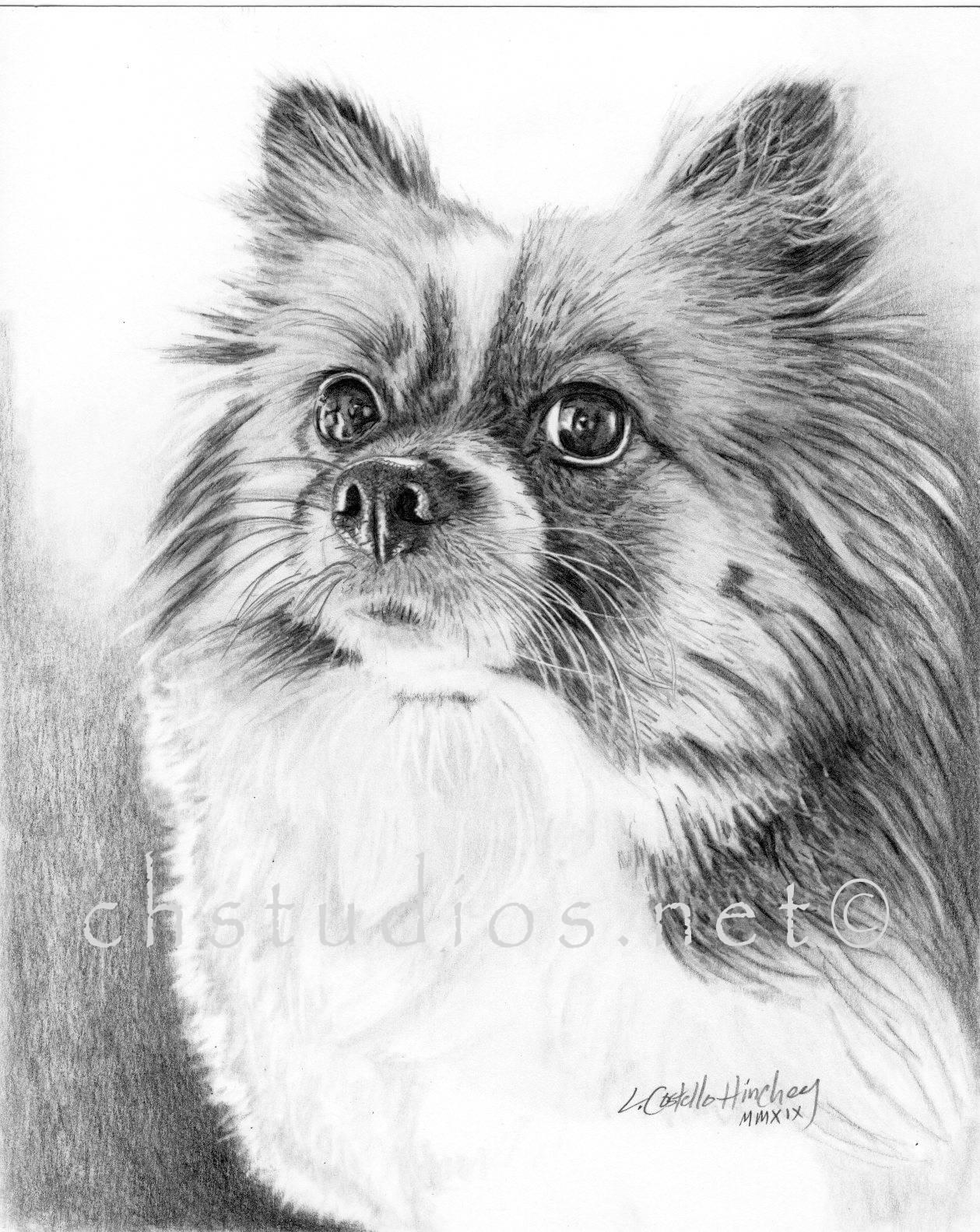 Sheila Dog Pet Portrait Commission
