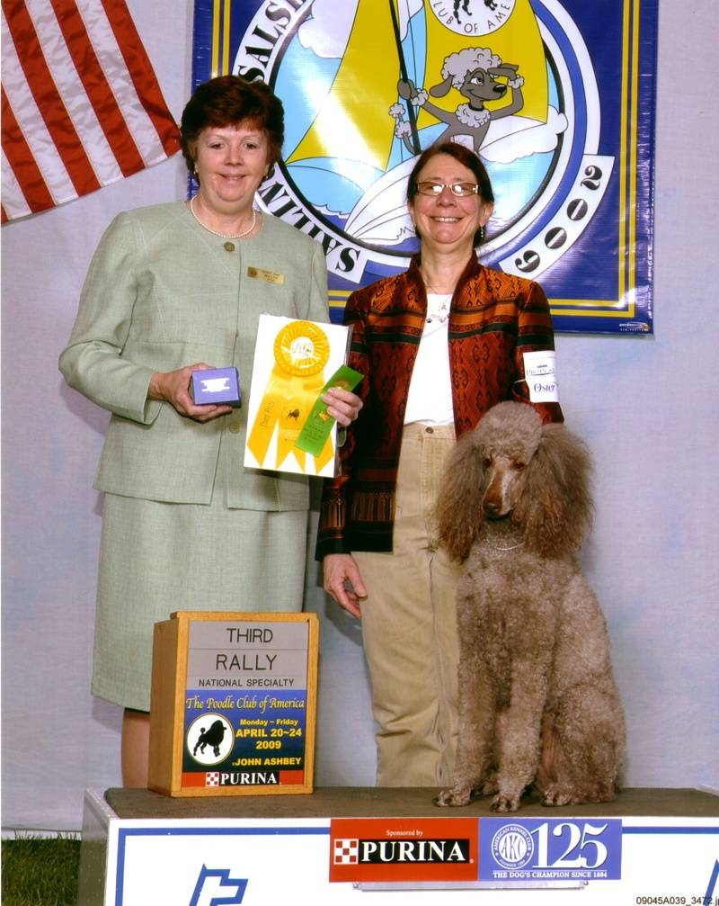 Amber winning Rally Advanced B third place at PCA National Specialty.  4/21/09.
