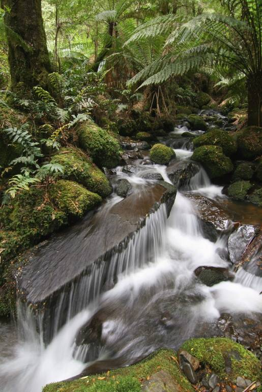 Creek Falls - wide view