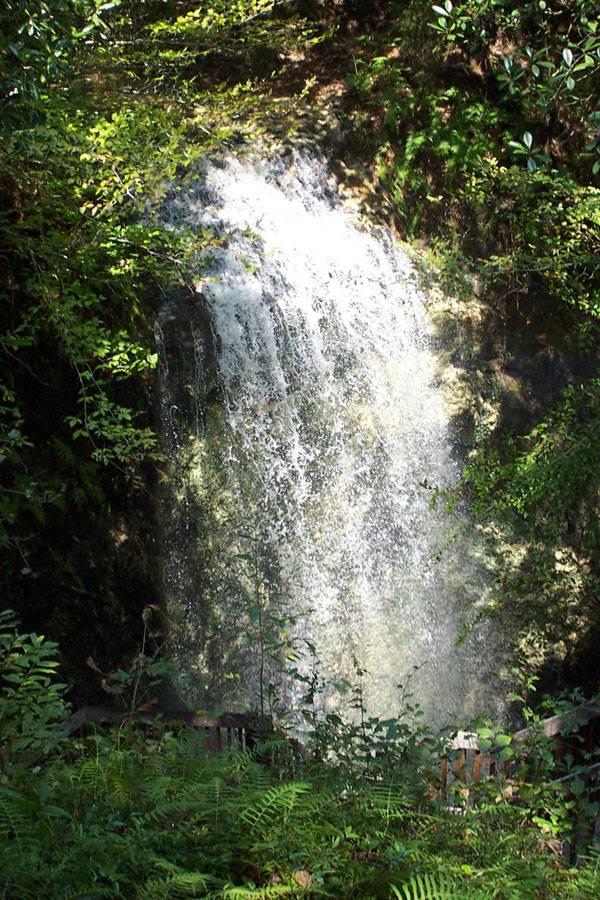 Tallest Waterfall in Florida