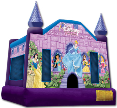 Disney Princess $90.00 plus tax