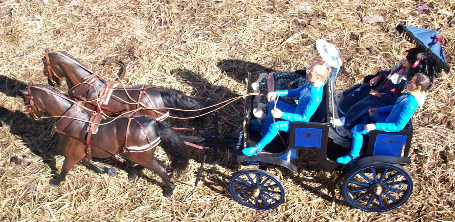 carriage harness
