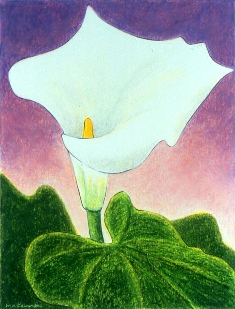Cloak of Simplicity - Calla Lily, Oil Pastel, 11x14, Original Sold