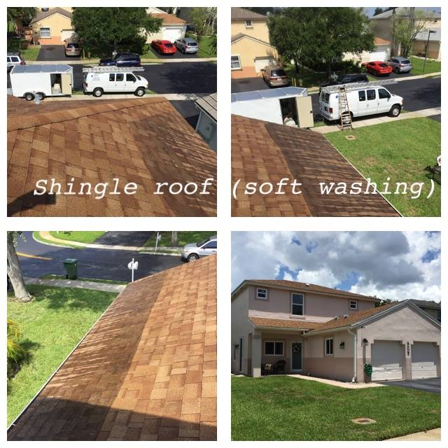 Shingle Roof Soft Washing
