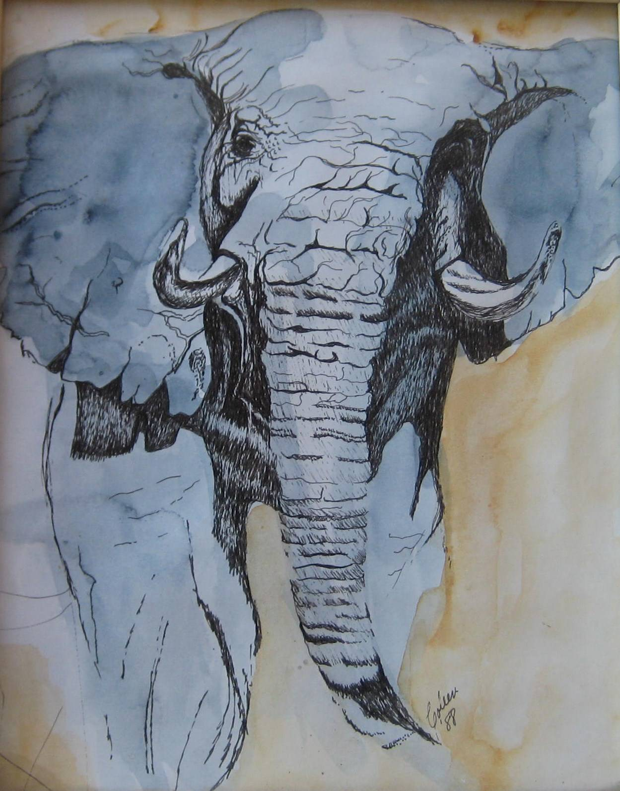 Elephant in water color