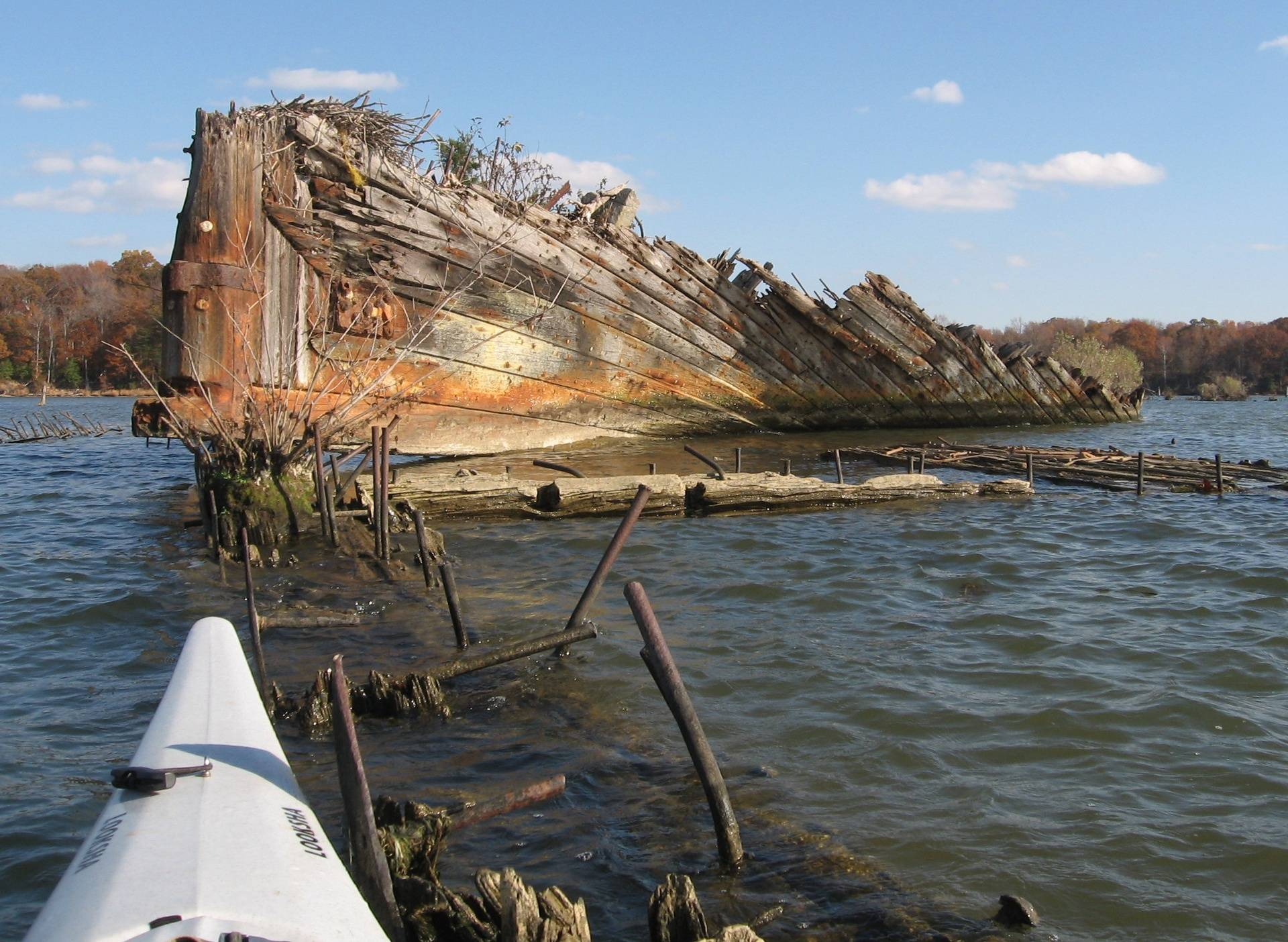 Mallows Bay - Ghost Fleet on Potomac